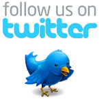 follow-us-on-twitter-bird