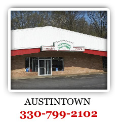 Locationthmb_Austintown